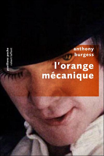 http://et-en-plus-elle-lit.cowblog.fr/images/Couv2/9782221108499.jpg